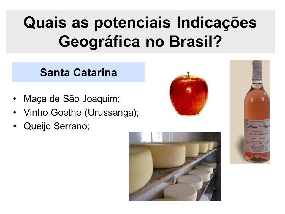 Santa Catarina Quais as potenciais Indicações Geográfica no Brasil? Maça de São Joaquim; Vinho Goethe (Urussanga); Queijo Serrano;