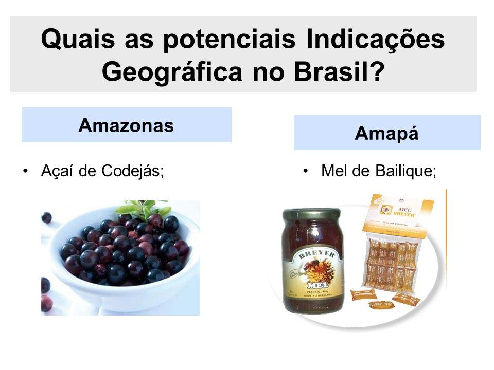 Amazonas Quais as potenciais Indicações Geográfica no Brasil? Açaí de Codejás; Amapá Mel de Bailique;