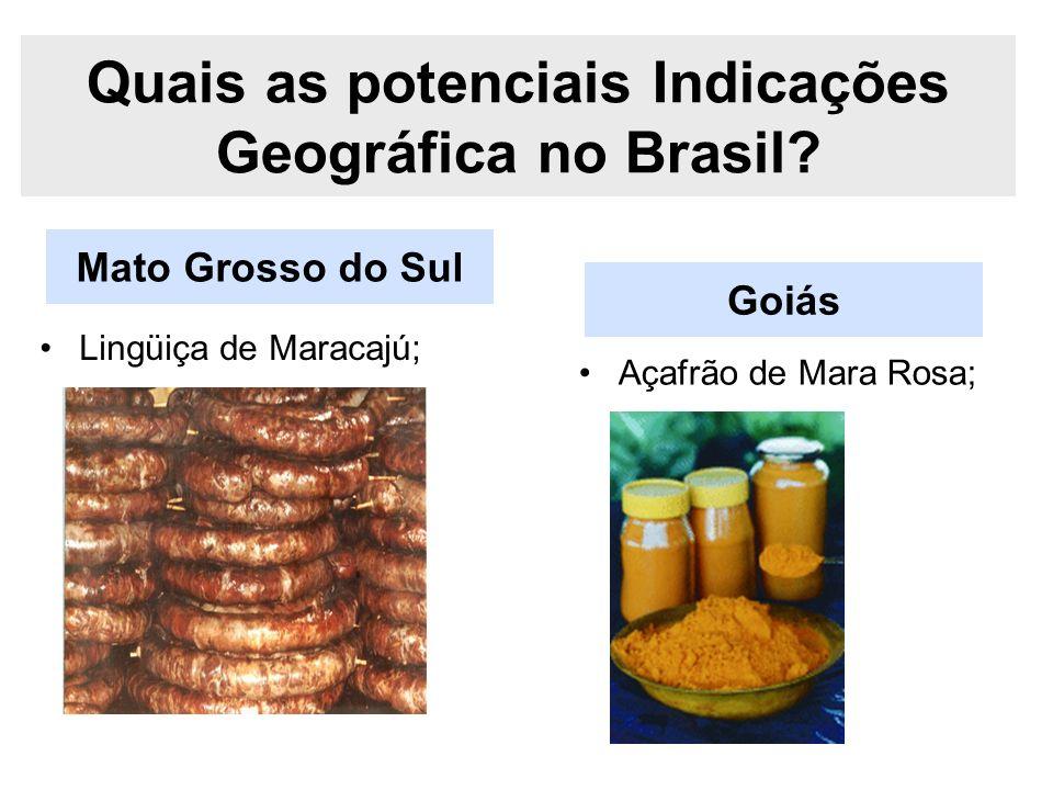Mato Grosso do Sul Quais as potenciais Indicações Geográfica no Brasil? Lingüiça de Maracajú; Goiás Açafrão de Mara Rosa;