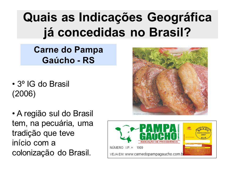 Quais as Indicações Geográfica já concedidas no Brasil? Carne do Pampa Gaúcho - RS NÚMERO I.P. = 1909 VEJA EM: www.carnedopampagaucho.com.br 3º IG do