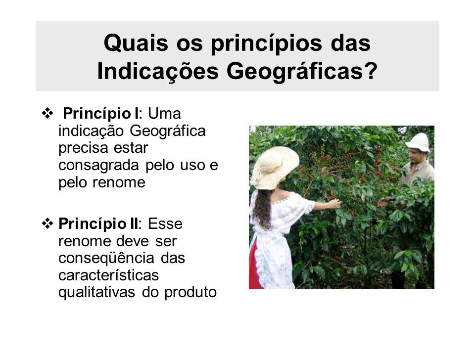 Quais os princípios das Indicações Geográficas? Princípio I: Uma indicação Geográfica precisa estar consagrada pelo uso e pelo renome Princípio II: Es