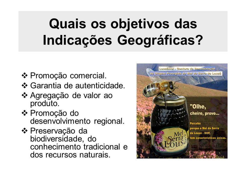 Quais os objetivos das Indicações Geográficas? Promoção comercial. Garantia de autenticidade. Agregação de valor ao produto. Promoção do desenvolvimen