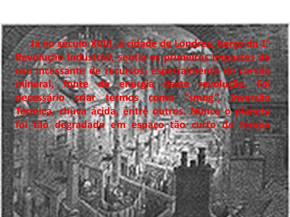 As consequências deste processo são drásticas: Inversão térmica, chuvas ácidas, Smog, contaminação dos lençóis freáticos, rios e mares, desmatamento, medo, agora ampliado pelo terremoto no Japão, de um acidente nuclear (adormecido pós-ano-80, depois da explosão do reator de Chernobyl na Ucrânia) e, ainda, um difícil problema a ser resolvido pela população terrestre: o aquecimento global.