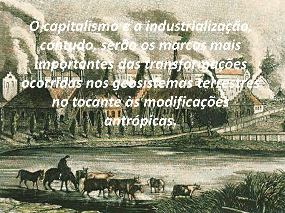Os impactos ambientais serão levados a um patamar e a uma intensidade antes desconhecidos da humanidade.