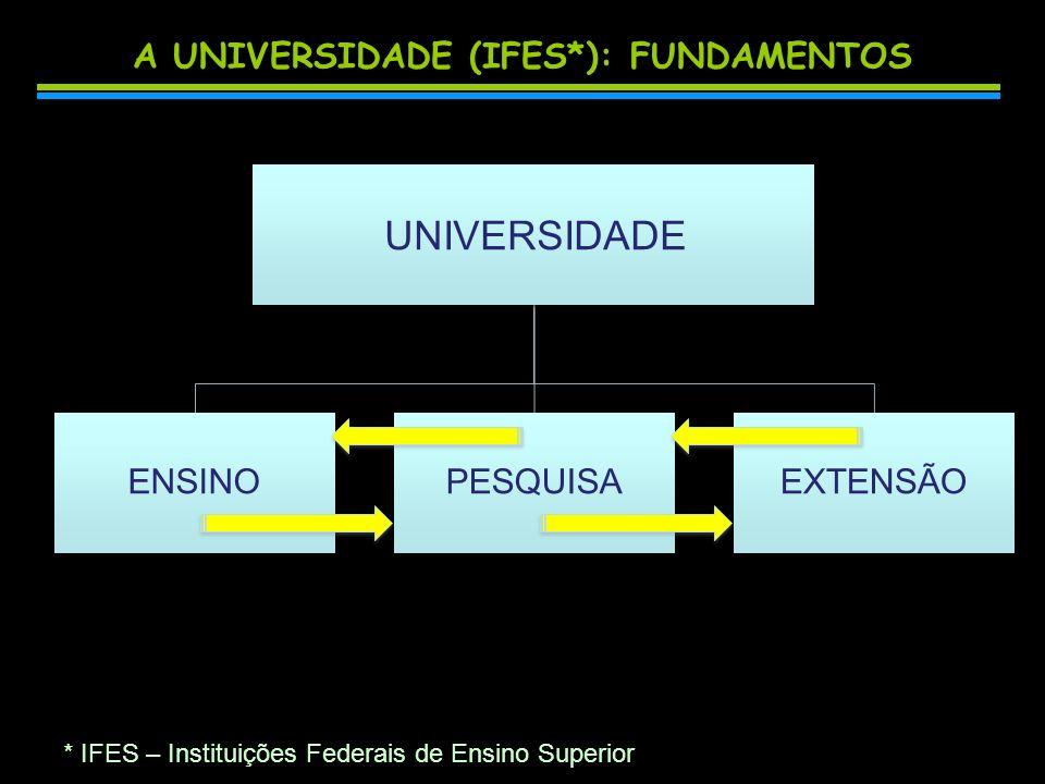 A UNIVERSIDADE (IFES): APLICAÇÕES UNIVERSIDADE ENSINOPESQUISAEXTENSÃO Graduação Pós-graduação Graduação Pós-graduação Publicações Patentes Relatórios Publicações Patentes Relatórios Treinamento Capacitação Serviços Assistência Treinamento Capacitação Serviços Assistência * IFES – Instituições Federais de Ensino Superior