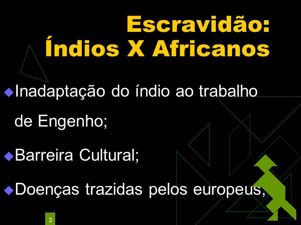 2 Escravidão: Índios X Africanos Inadaptação do índio ao trabalho de Engenho; Barreira Cultural; Doenças trazidas pelos europeus;
