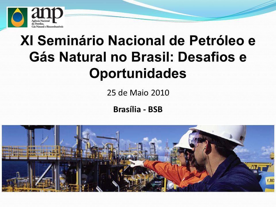 XI Seminário Nacional de Petróleo e Gás Natural no Brasil: Desafios e Oportunidades 25 de Maio 2010 Brasília - BSB