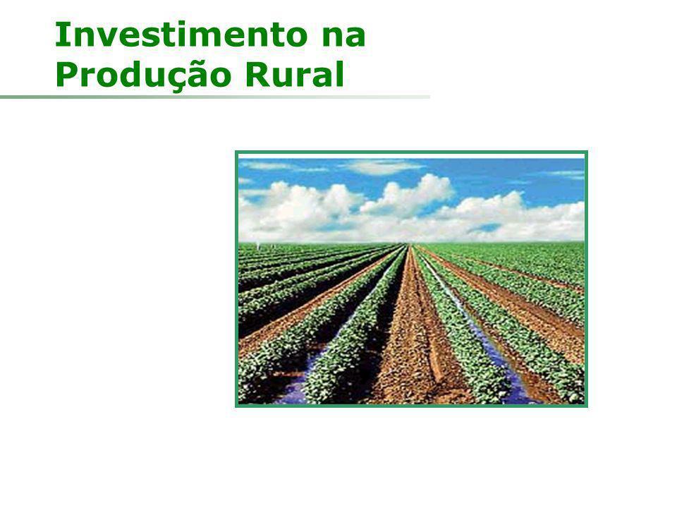 Investimento na Produção Rural