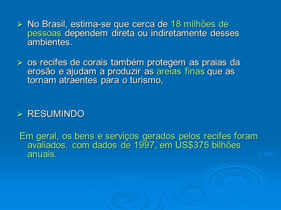 No Brasil, estima-se que cerca de 18 milhões de pessoas dependem direta ou indiretamente desses ambientes. No Brasil, estima-se que cerca de 18 milhõe