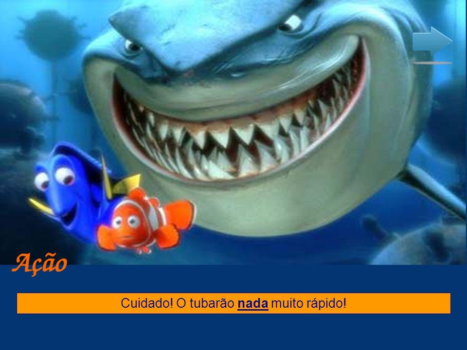 Cuidado! O tubarão nada muito rápido!