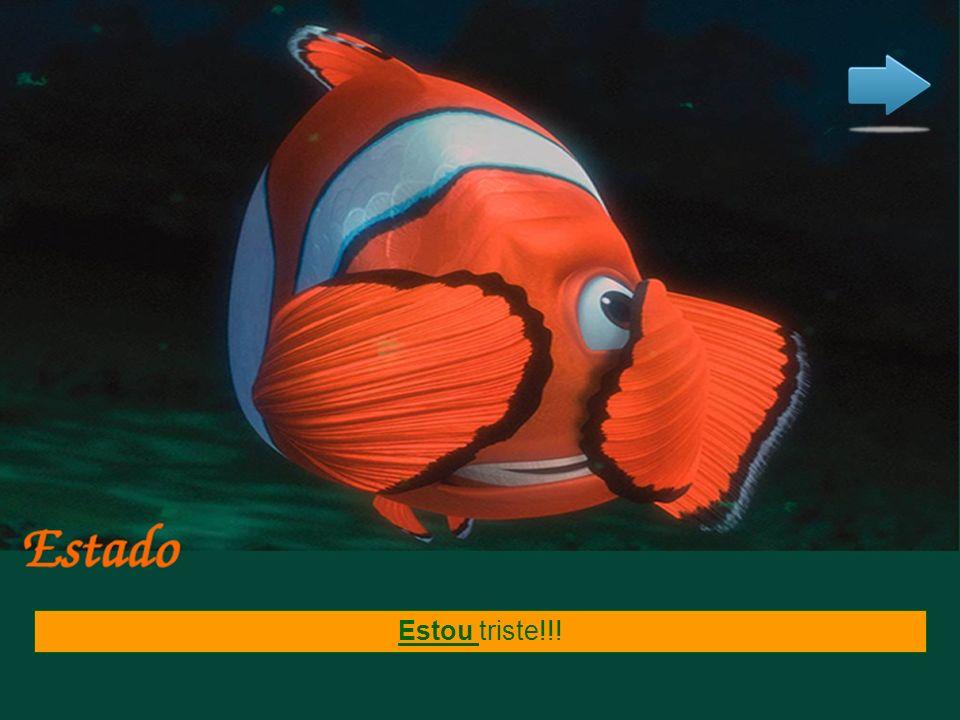 Nemo nadava todas as manhãs pròximo a superfície. Uma ação que era habitual no passado.