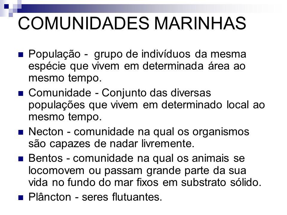 COMUNIDADES MARINHAS População - grupo de indivíduos da mesma espécie que vivem em determinada área ao mesmo tempo. Comunidade - Conjunto das diversas