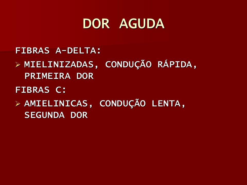 DOR AGUDA FIBRAS A-DELTA: MIELINIZADAS, CONDUÇÃO RÁPIDA, PRIMEIRA DOR MIELINIZADAS, CONDUÇÃO RÁPIDA, PRIMEIRA DOR FIBRAS C: AMIELINICAS, CONDUÇÃO LENT