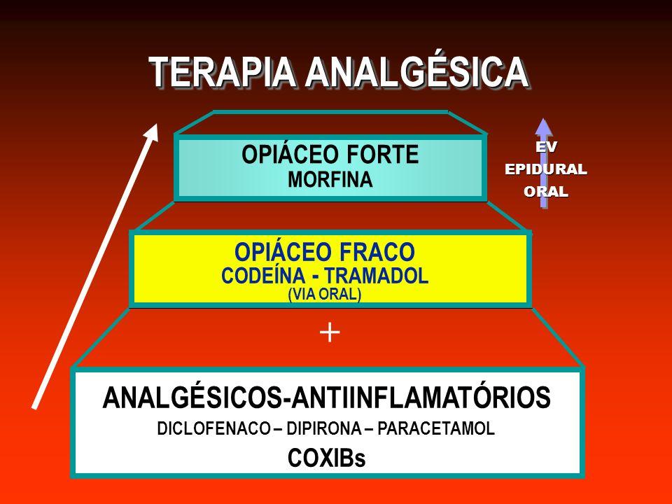 TERAPIA ANALGÉSICA ANALGÉSICOS-ANTIINFLAMATÓRIOS DICLOFENACO – DIPIRONA – PARACETAMOLCOXIBs + OPIÁCEO FRACO CODEÍNA - TRAMADOL (VIA ORAL) OPIÁCEO FORTE MORFINA EVEPIDURALORAL