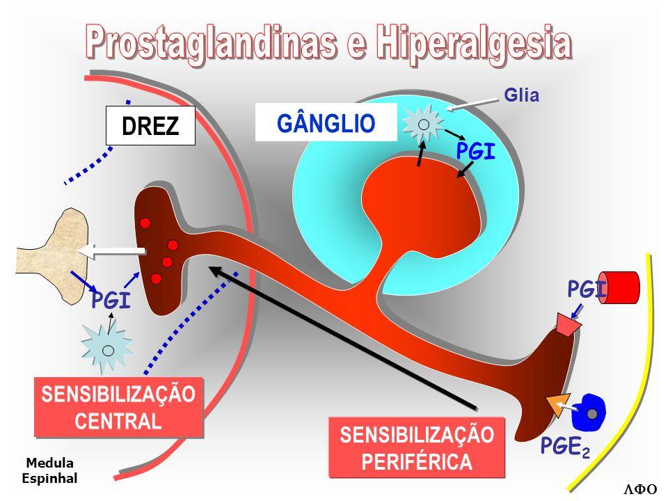 SENSIBILIZAÇÃO Hiperalgesia Secundária AFERENTE NOCICEPTIVO Mecanismos Espinhais + - GLU sP INIBIÇÃOAlfa2 5-HT Opióide Recrutamento FACILITAÇÃO Ca +2 WIND-UP NMDA NMDA AMPA CCK PG FR
