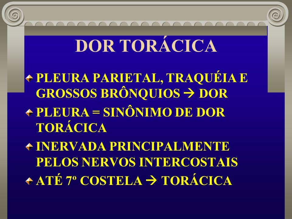 DOR TORÁCICA PLEURA PARIETAL, TRAQUÉIA E GROSSOS BRÔNQUIOS DOR PLEURA = SINÔNIMO DE DOR TORÁCICA INERVADA PRINCIPALMENTE PELOS NERVOS INTERCOSTAIS ATÉ