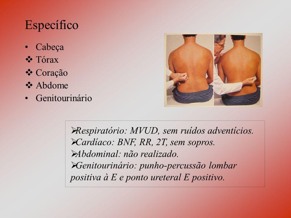 Específico Cabeça Tórax Coração Abdome Genitourinário Respiratório: MVUD, sem ruídos adventícios.