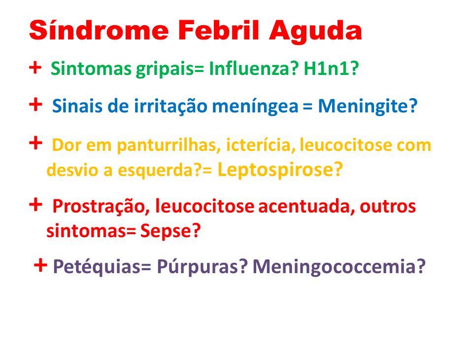 Síndrome Febril Aguda + Sintomas gripais= Influenza.