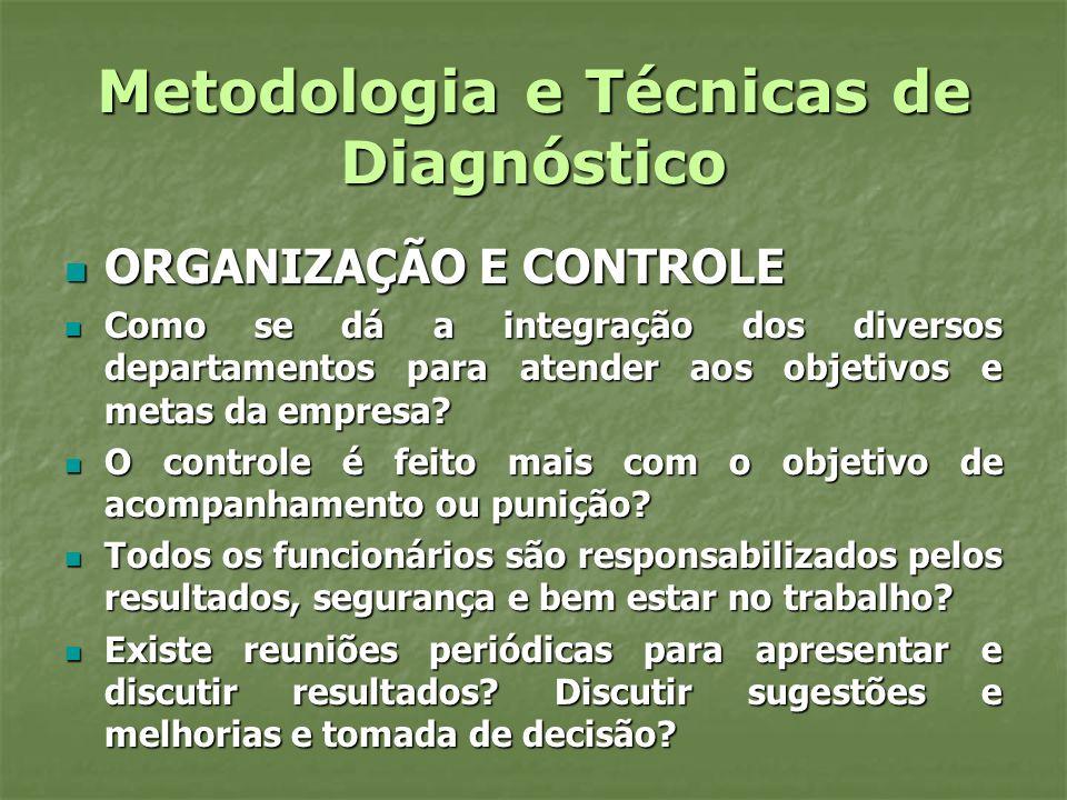 Metodologia e Técnicas de Diagnóstico ORGANIZAÇÃO E CONTROLE ORGANIZAÇÃO E CONTROLE Como se dá a integração dos diversos departamentos para atender ao