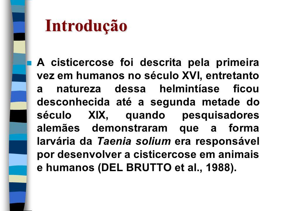 Introdução n A cisticercose foi descrita pela primeira vez em humanos no século XVI, entretanto a natureza dessa helmintíase ficou desconhecida até a
