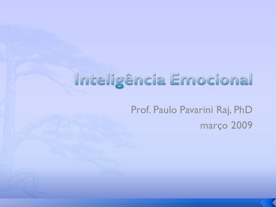 Prof. Paulo Pavarini Raj, PhD março 2009