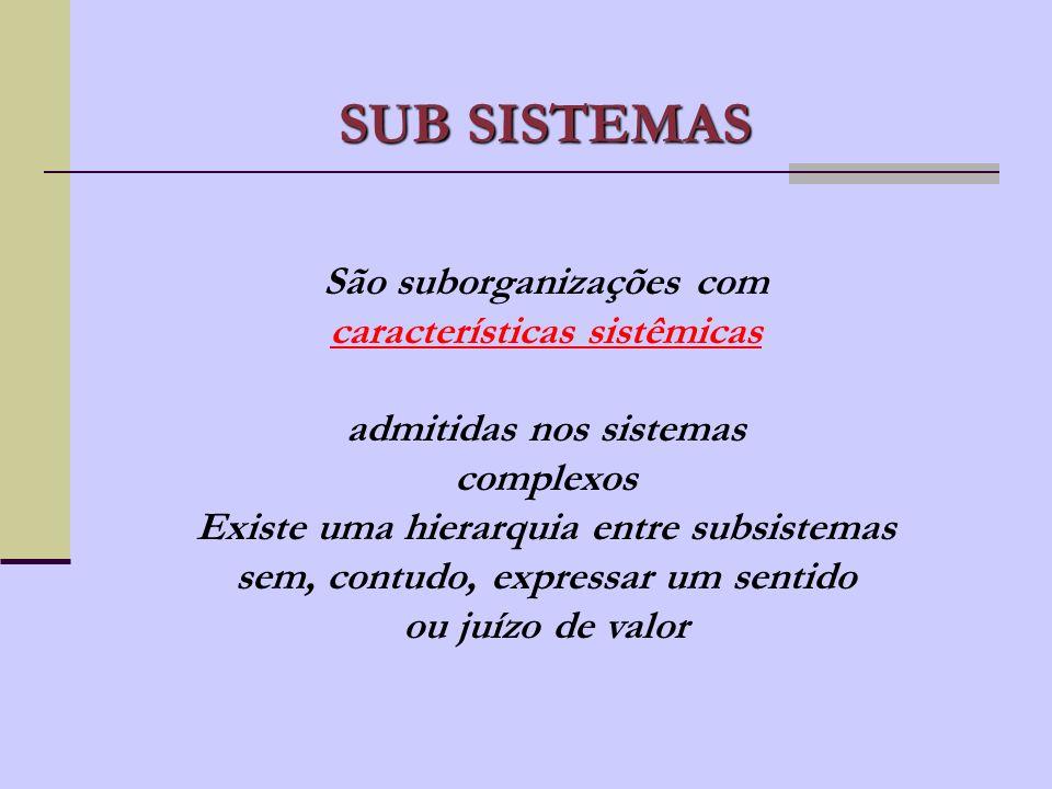 Subsistema Crenças e Valores Subsistema de Gestão Subsistema Social Subsistema de Informação Subsistema Organizacional Subsistema Físico INTERAÇÃO ENT