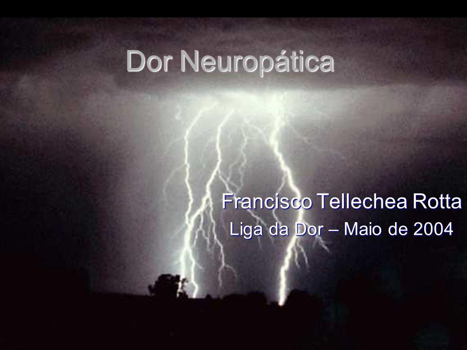 Dor Neuropática Francisco Tellechea Rotta Liga da Dor – Maio de 2004