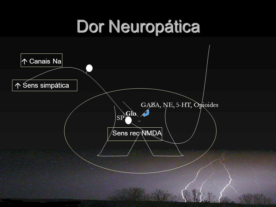Dor Neuropática SP Glu GABA, NE, 5-HT, Opioides Canais Na Sens rec NMDA Sens simpática