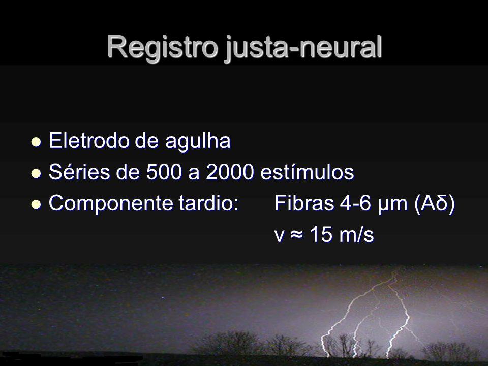 Registro justa-neural Eletrodo de agulha Eletrodo de agulha Séries de 500 a 2000 estímulos Séries de 500 a 2000 estímulos Componente tardio: Fibras 4-6 μm (Aδ) Componente tardio: Fibras 4-6 μm (Aδ) v 15 m/s