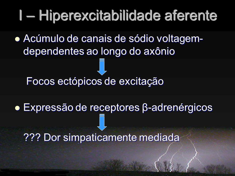 I – Hiperexcitabilidade aferente Acúmulo de canais de sódio voltagem- dependentes ao longo do axônio Acúmulo de canais de sódio voltagem- dependentes ao longo do axônio Focos ectópicos de excitação Focos ectópicos de excitação Expressão de receptores β-adrenérgicos Expressão de receptores β-adrenérgicos ??.