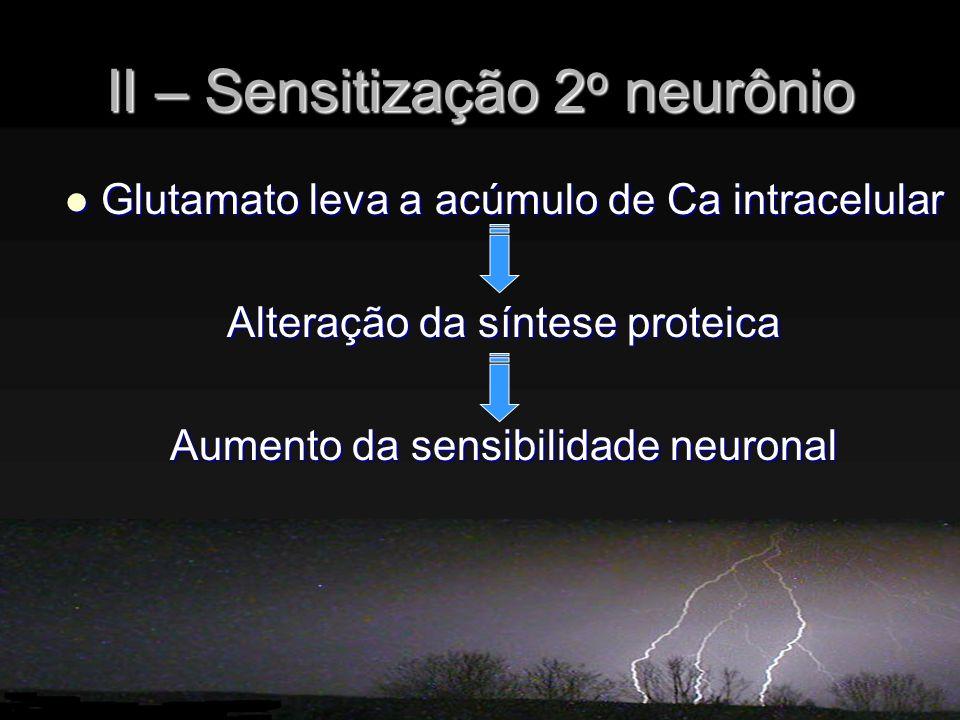 II – Sensitização 2 o neurônio Glutamato leva a acúmulo de Ca intracelular Glutamato leva a acúmulo de Ca intracelular Alteração da síntese proteica Aumento da sensibilidade neuronal