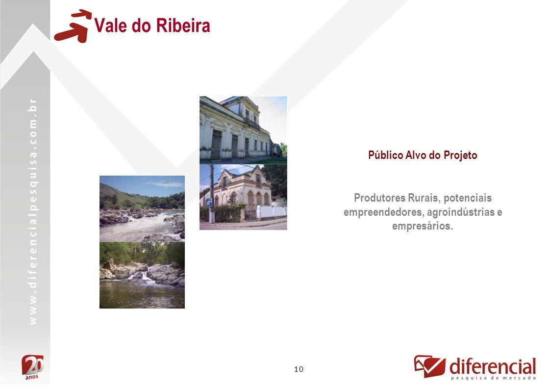10 Público Alvo do Projeto Produtores Rurais, potenciais empreendedores, agroindústrias e empresários.