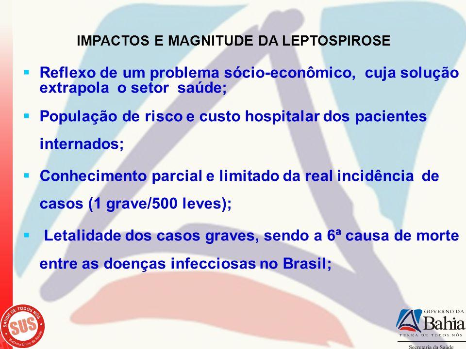 Reflexo de um problema sócio-econômico, cuja solução extrapola o setor saúde; População de risco e custo hospitalar dos pacientes internados; Conhecim
