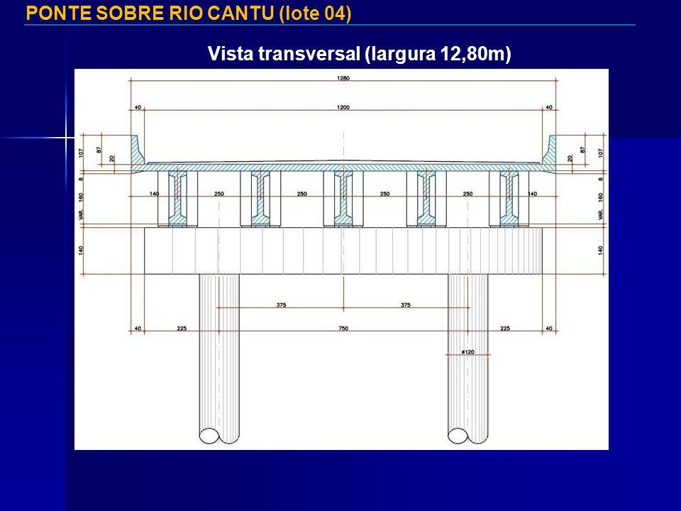 PONTE SOBRE RIO CANTU (lote 04) Vista transversal (largura 12,80m)
