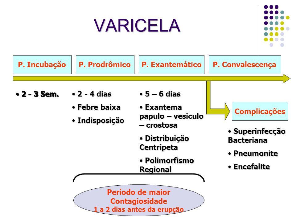 VARICELA P. ProdrômicoP. ExantemáticoP. ConvalescençaP. Incubação Complicações 2 - 4 dias 2 - 4 dias Febre baixa Febre baixa Indisposição Indisposição