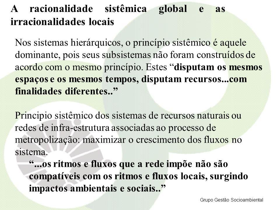 A racionalidade sistêmica global e as irracionalidades locais Nos sistemas hierárquicos, o princípio sistêmico é aquele dominante, pois seus subsistem
