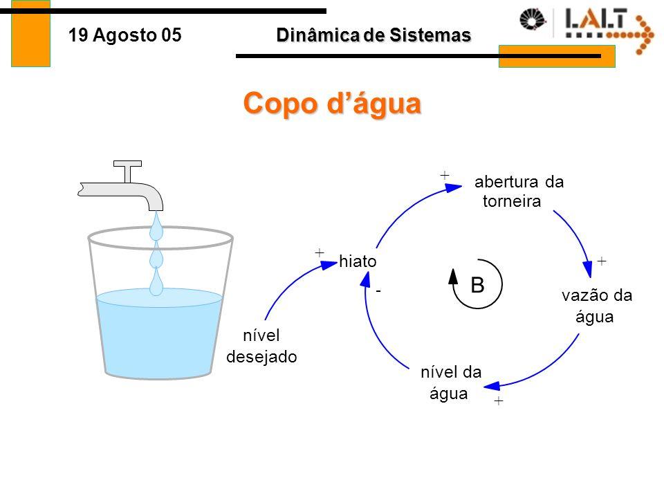 Dinâmica de Sistemas 19 Agosto 05 Loops Causais Crianças Adultos + + São diagramas para entendermos as relações entre variáveis Conceito Direção de in