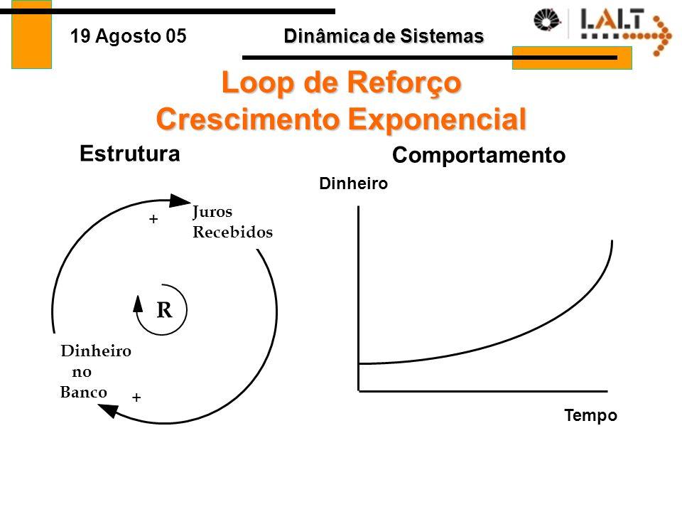 Dinâmica de Sistemas 19 Agosto 05 Loops de Reforço (positivo) É a força geradora de crescimento e declínio –Amplificação –Instabilidade –Crescimento o