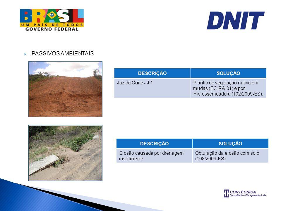 PASSIVOS AMBIENTAIS DESCRIÇÃOSOLUÇÃO Jazida Cuité - J.1Plantio de vegetação nativa em mudas (EC-RA-01) e por Hidrossemeadura (102/2009-ES). DESCRIÇÃOS