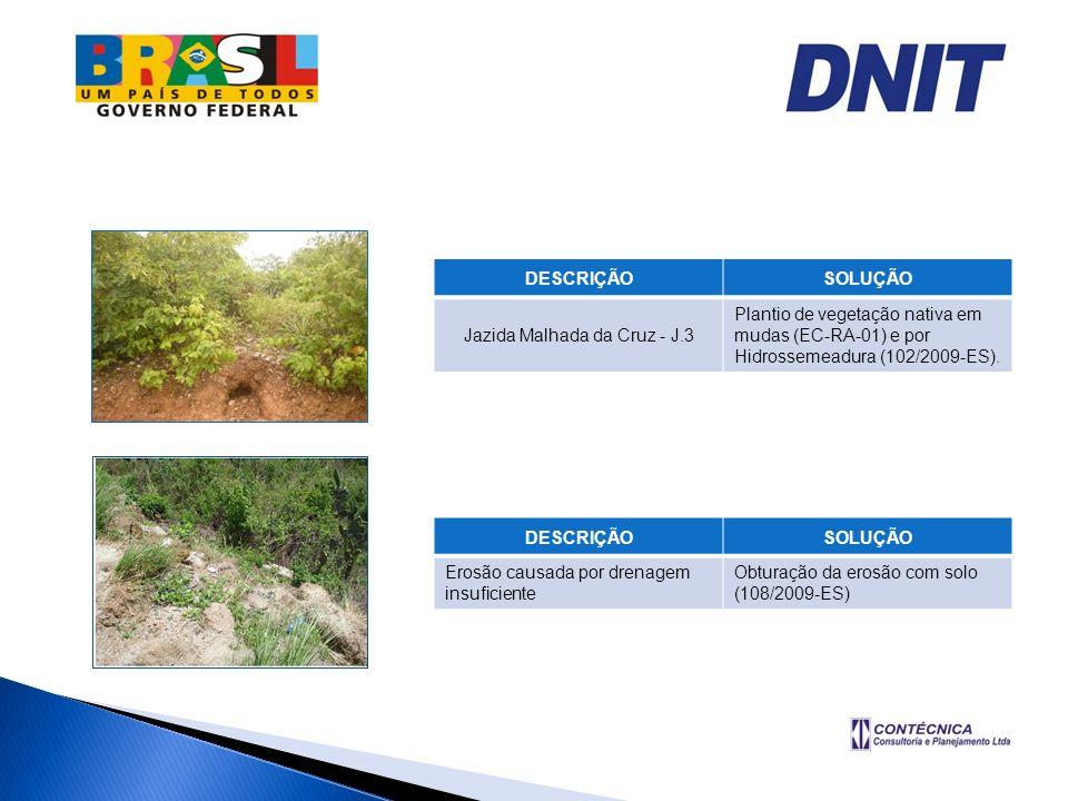 DESCRIÇÃOSOLUÇÃO Jazida Malhada da Cruz - J.3 Plantio de vegetação nativa em mudas (EC-RA-01) e por Hidrossemeadura (102/2009-ES). DESCRIÇÃOSOLUÇÃO Er
