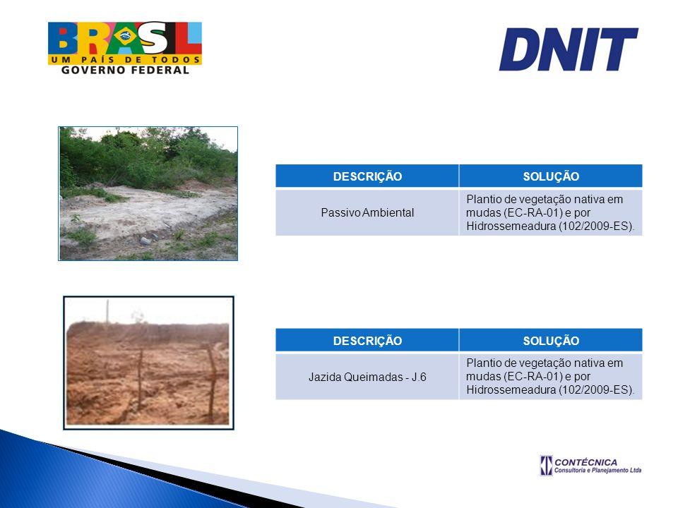 DESCRIÇÃOSOLUÇÃO Passivo Ambiental Plantio de vegetação nativa em mudas (EC-RA-01) e por Hidrossemeadura (102/2009-ES). DESCRIÇÃOSOLUÇÃO Jazida Queima