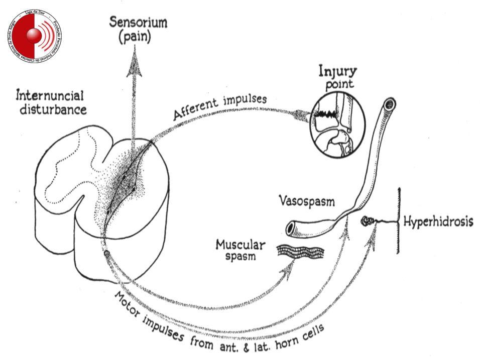 Fisiopatologia da lesão