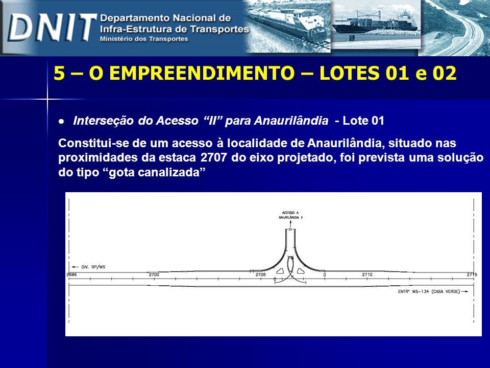 5 – O EMPREENDIMENTO – LOTES 01 e 02 Interseção do Acesso II para Anaurilândia - Lote 01 Constitui-se de um acesso à localidade de Anaurilândia, situa