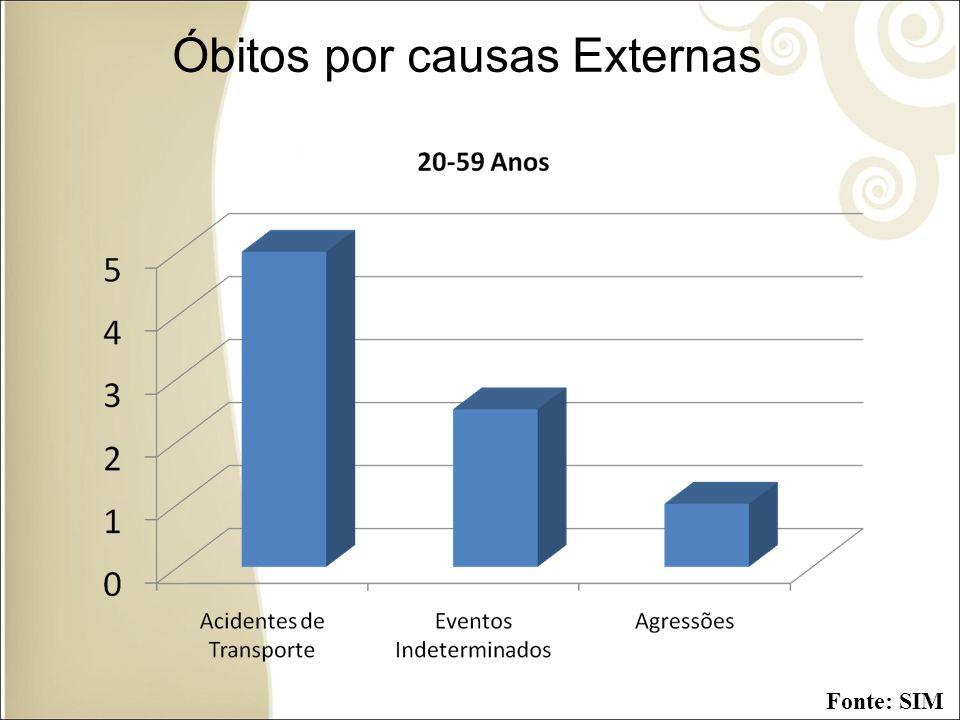 Óbitos por causas Externas Fonte: SIM