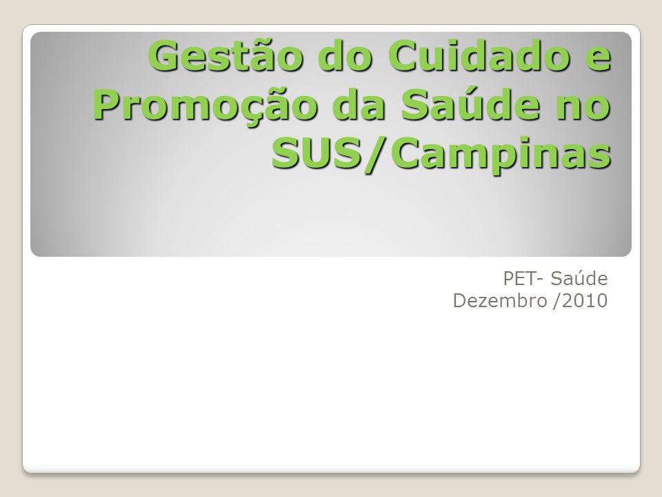 Gestão do Cuidado e Promoção da Saúde no SUS/Campinas PET- Saúde Dezembro /2010