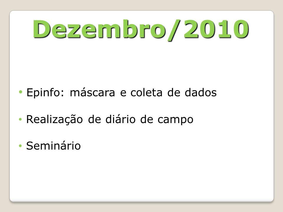Epinfo: máscara e coleta de dados Realização de diário de campo Seminário Dezembro/2010