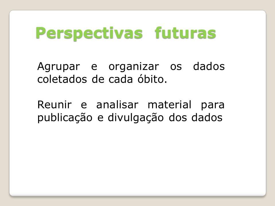 Perspectivas futuras Agrupar e organizar os dados coletados de cada óbito. Reunir e analisar material para publicação e divulgação dos dados