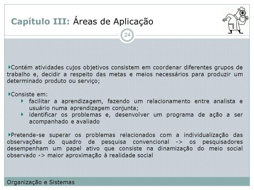 Capítulo III: Áreas de Aplicação Contém atividades cujos objetivos consistem em coordenar diferentes grupos de trabalho e, decidir a respeito das meta