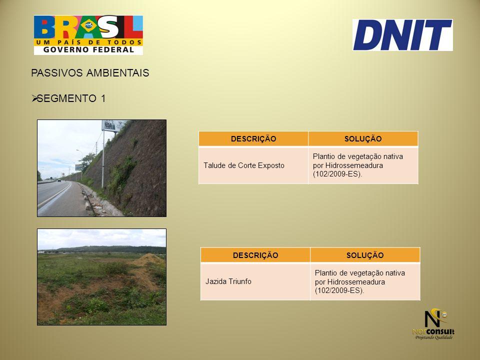 PASSIVOS AMBIENTAIS SEGMENTO 1 DESCRIÇÃOSOLUÇÃO Talude de Corte Exposto Plantio de vegetação nativa por Hidrossemeadura (102/2009-ES).
