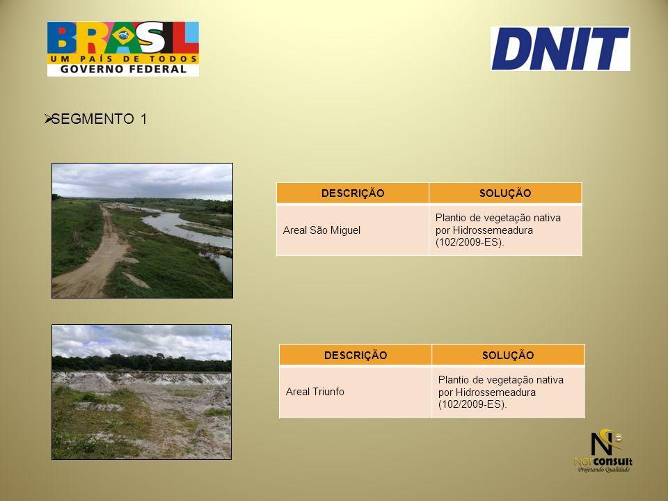 SEGMENTO 1 DESCRIÇÃOSOLUÇÃO Areal São Miguel Plantio de vegetação nativa por Hidrossemeadura (102/2009-ES).